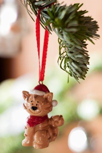 Wesołych, ciepłych i kocich Świąt