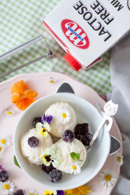 Lody jogurtowe z mlekiem